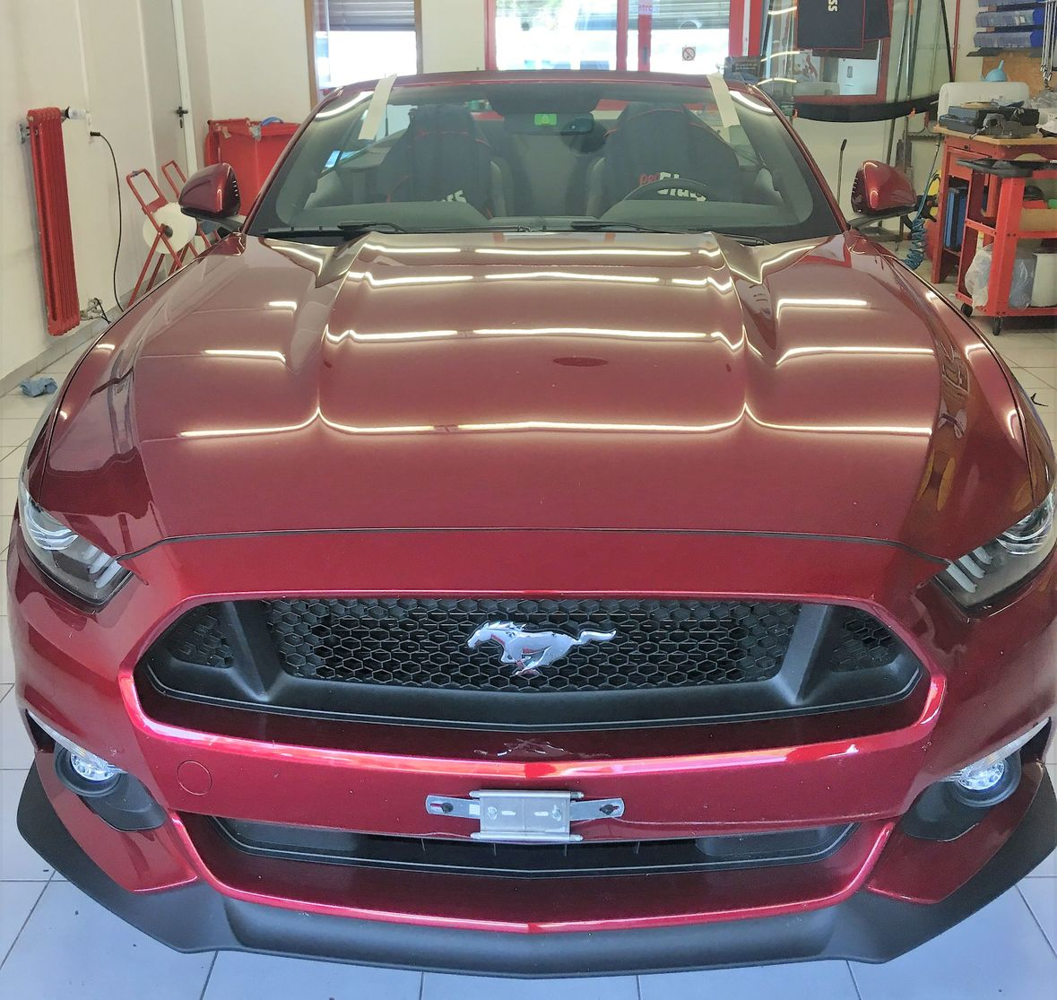 Ford Mustang Glasspartner